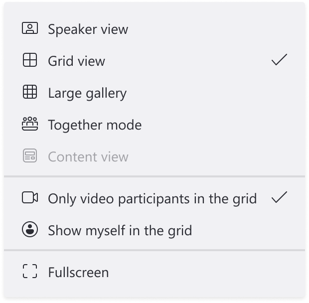 Image showing light theme with View selected and showing different option of the calls like grid view, large gallery or Together mode